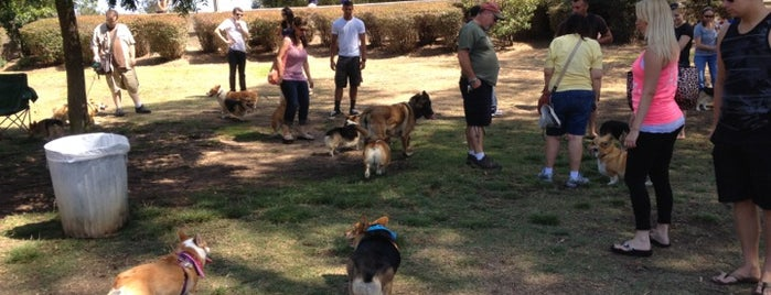 Nate's Point Dog Park is one of Guide to San Diego's best spots.