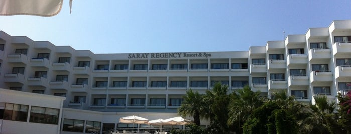 Saray Regency Resort&Spa is one of Orte, die Yılmaz gefallen.