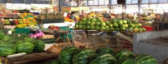 Mercado do Porto is one of Henrique 님이 좋아한 장소.