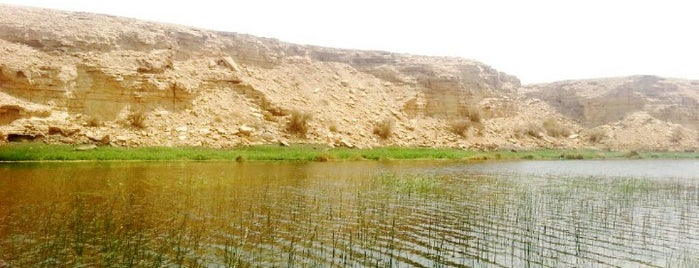 Wadi Namar Dam Park is one of Orte, die Madawi gefallen.