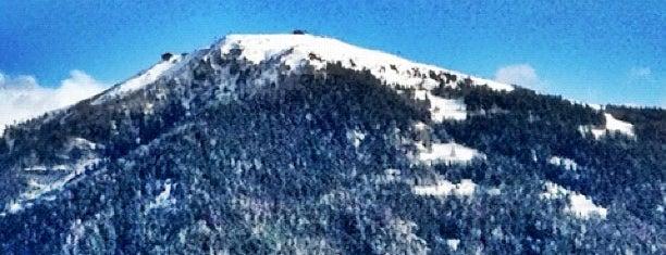 Piculin is one of Dolomiti Super Ski - Italy.