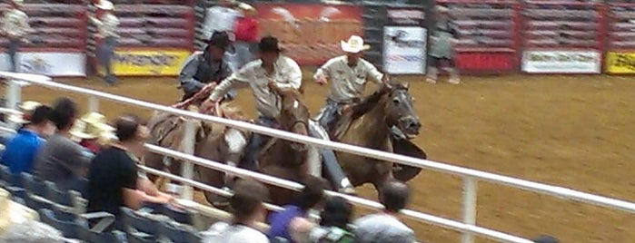 Mesquite Rodeo is one of Fun Things To Do.