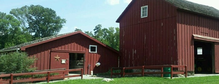 Springton Manor Farm is one of Best of: French Creek State Park.