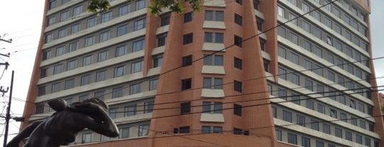 Embassy Suites by Hilton is one of Posti che sono piaciuti a Maria Gabriela.
