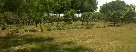 Duck Creek Blackberry Farm is one of Lugares guardados de diana.