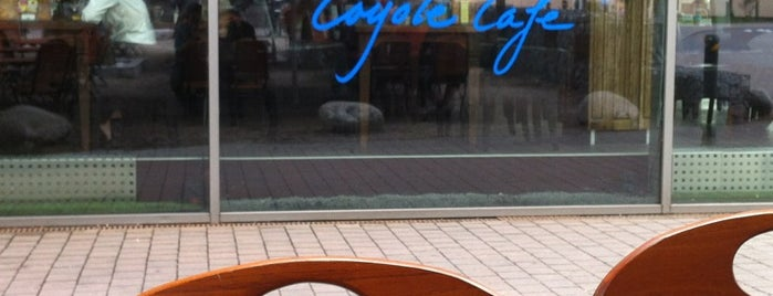 Coyote Cafe is one of Frank 님이 좋아한 장소.