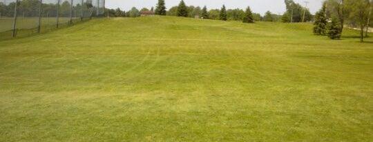 Mid-Iron Golf Club is one of Birdie ( Worldwide ).