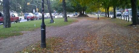Boulevard Dardo Rocha is one of สถานที่ที่ Alexandre ถูกใจ.