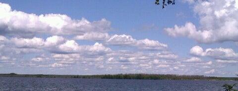 Природный заказник «Сестрорецкое болото» is one of สถานที่ที่บันทึกไว้ของ Galina.