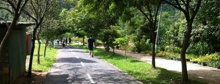 Parque Municipal de Petrópolis is one of Locais curtidos por Arthur.