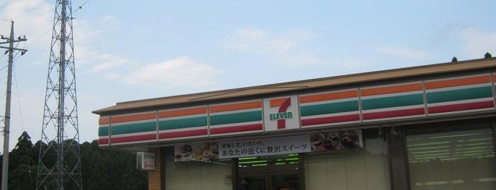セブンイレブン 芝山小池店 is one of 田舎のランドマークコンビ二@千葉・東金基点.