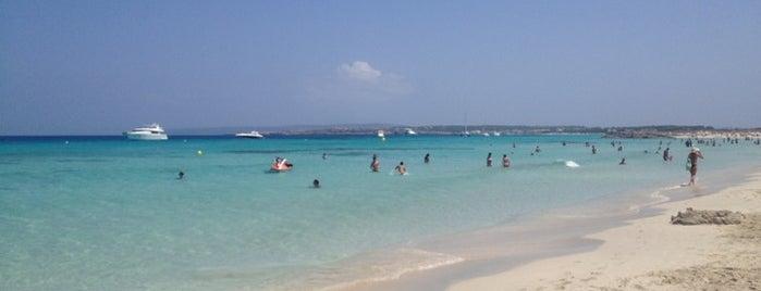 Playa De Tanga is one of Ibiza.