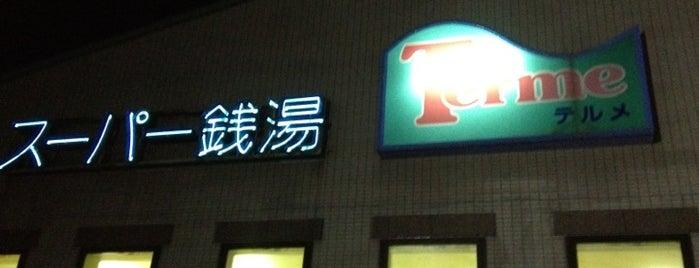スーパー銭湯 テルメ is one of お風呂と温泉.