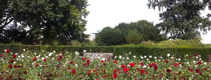 Rosengarten is one of Grün und Blau Berlin.
