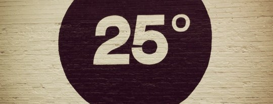 25 Degrees is one of Chicago's Best Burgers - 2012.