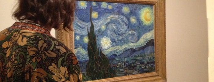 Art Gallery, Art Museum