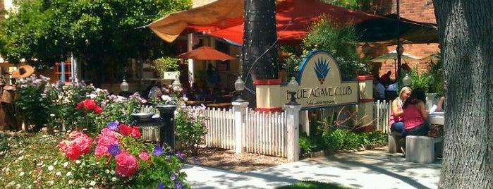 Blue Agave Club is one of Tejas : понравившиеся места.