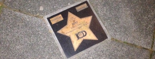 BVB Walk of Fame #78 1997 Martin Kree Champions League-Sieger is one of BVB Walk of Fame.
