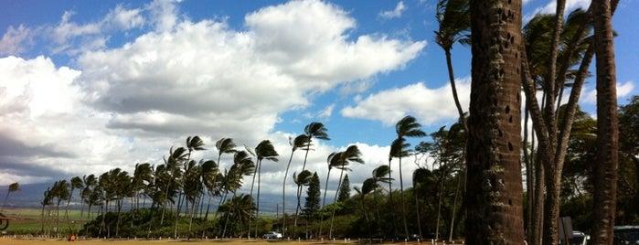 Baldwin Beach Park is one of Hawaii.