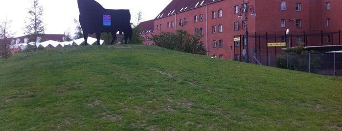 Den Grønne Park is one of Dagligdagstips: Mest fra Ydre 2200 +Ydre 2100.