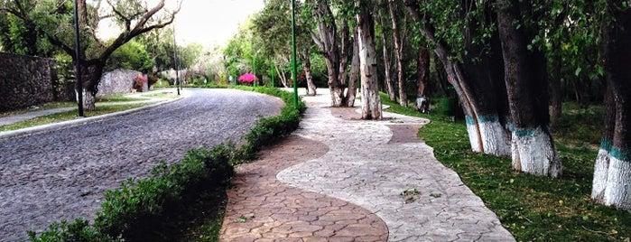 Paseo Del Rio is one of Marko: сохраненные места.
