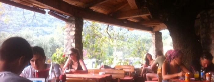 Kusta is one of montenegro.