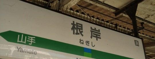 Negishi Station is one of JR 미나미간토지방역 (JR 南関東地方の駅).