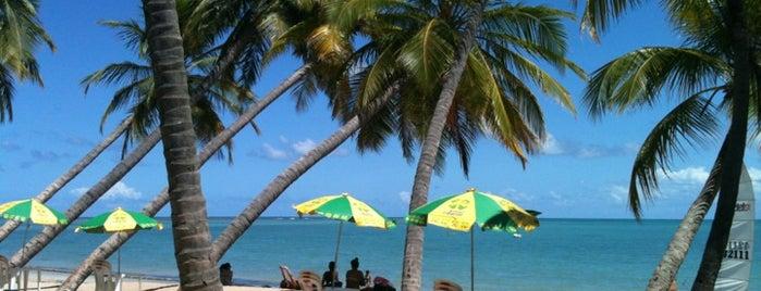 Praia de Sete Coqueiros is one of Nordeste de Brasil - 2.