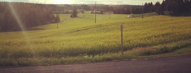 Orivesi is one of สถานที่ที่ Juha ถูกใจ.