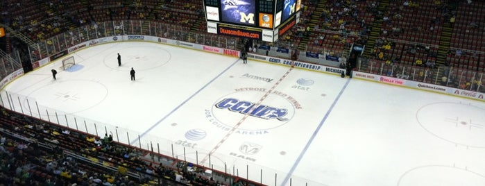 Joe Louis Arena is one of Detroit #4sqCities.