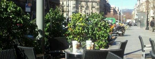 Starbucks is one of Spain.