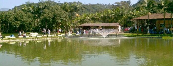 Pesque Pague Pirai is one of Lugares favoritos de M.a..