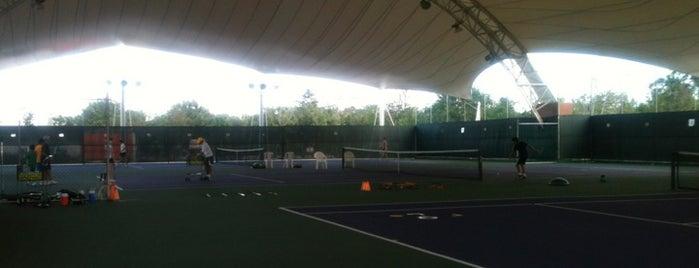 World Tennis is one of Nadia'nın Beğendiği Mekanlar.