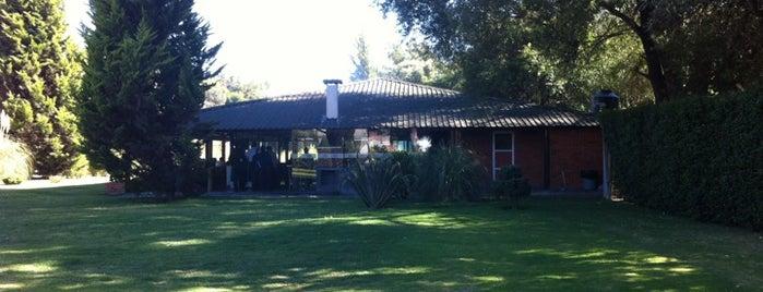 El Asador Del Vecino is one of สถานที่ที่ Karen ถูกใจ.