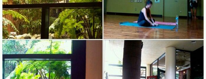 Bryan Kest Power Yoga is one of Untuck Thyself.