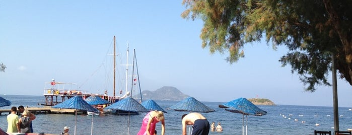Peda Bodrum Blue Hotel is one of Muhtelif.