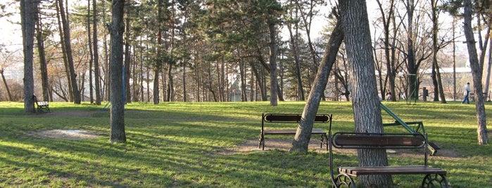 Pivarski park is one of Make sure to visit in Kragujevac.