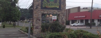 Blackthorn Restaurant & Irish Pub is one of Lizzie 님이 저장한 장소.