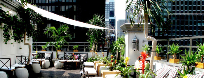 Ava Lounge is one of Best Rooftop and Outdoor Bars in New York City.