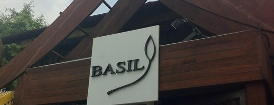 Basil is one of When in QC.