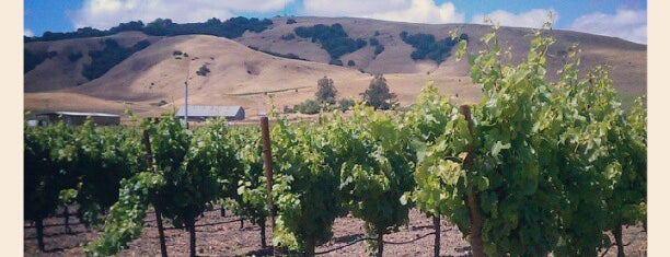 Robledo Family Winery is one of Sonoma.