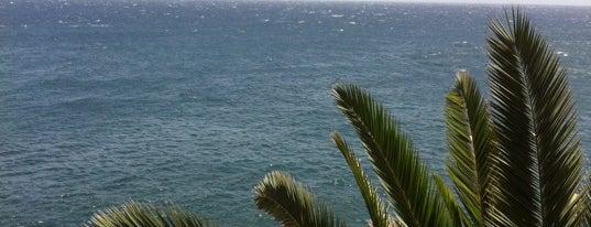 El Mirador is one of Tenerife.