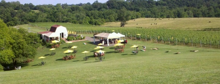 Three Fox Vineyards is one of Activities-DC.