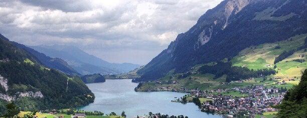 Schönbuhel Panorama is one of Interlaken.