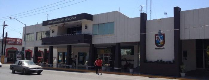 Municipio de Apodaca is one of Tempat yang Disukai Ana.