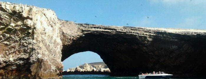 Reserva Nacional Islas Ballestas is one of Locais curtidos por Giovo.