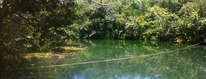 Car Wash Cenote is one of Caribe Mexicano.