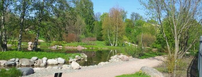 Kumpulan kasvitieteellinen puutarha is one of Mai Helsinki.