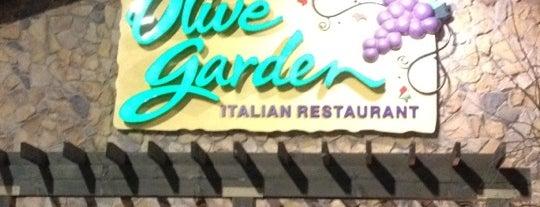 Olive Garden is one of Orte, die Berenice gefallen.
