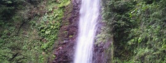 養老の滝 is one of Tempat yang Disukai とり.